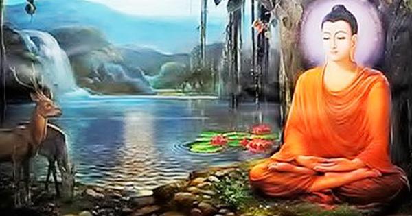 7 quy tắc theo triết lý nhà Phật để sống ung dung tự tại